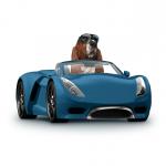 Llegó Rastreator.mx, tu mejor aliado para contratar el seguro de tu auto